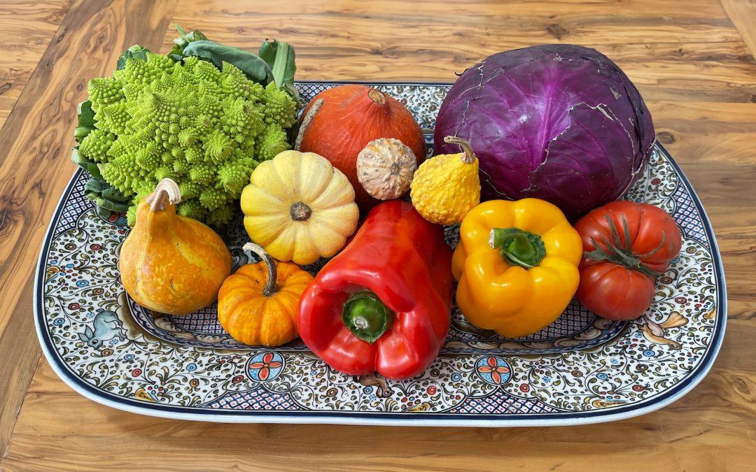 ¿Qué es la nutrición? ¿Qué es la alimentación? y ¿Qué papel jugamos todos en el mantenimiento de nuestra salud y calidad de vida?
